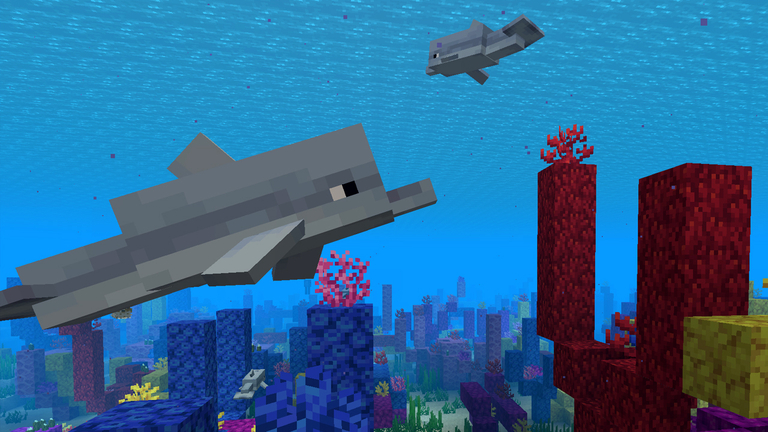 Image of: Attract As Lead Engineer On The Java Edition Nathan Has Been Heavily Involved In The Dolphins Design along With Jens Agnes And Particuarly Maria Lemón For The Minecraft Meet The Dolphin Minecraft